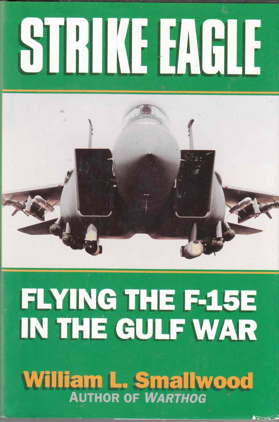 Image for Strike Eagle : Flying the F-15E in the Gulf War