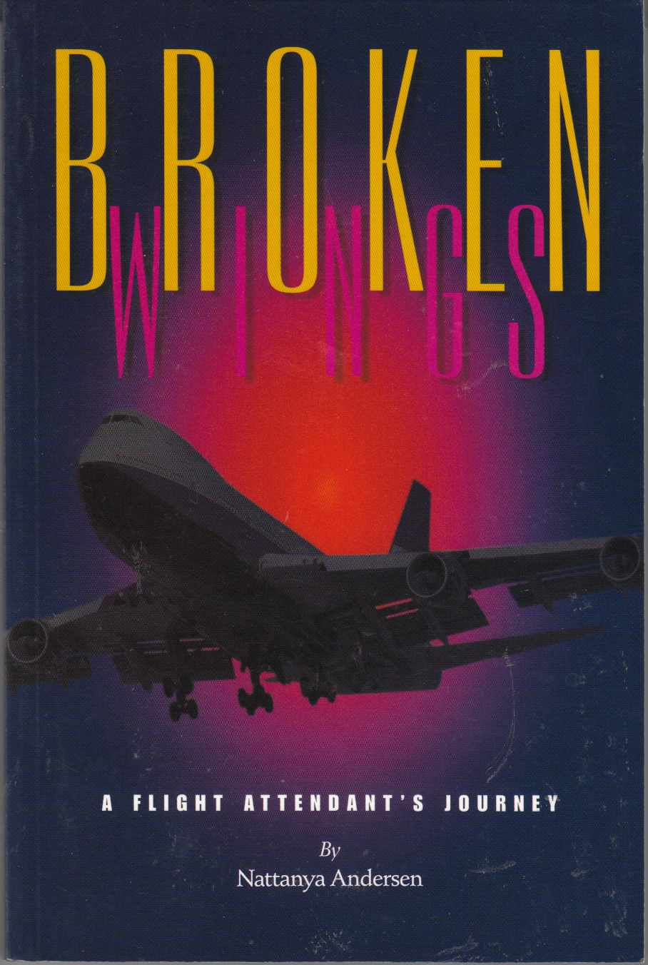 Image for Broken Wings A Flight Attendant's Journey