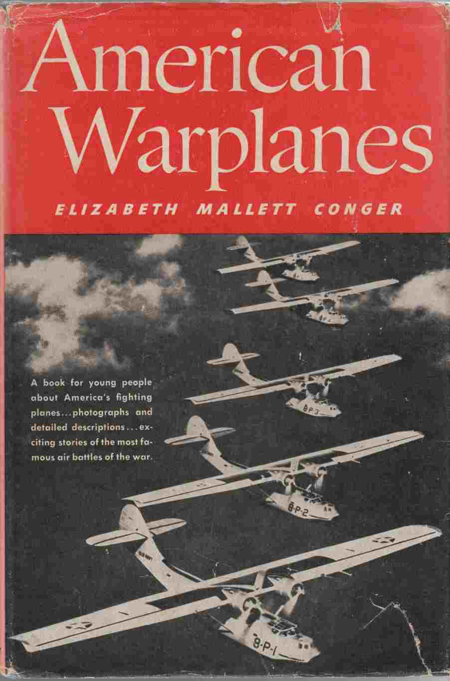 Image for American Warplanes