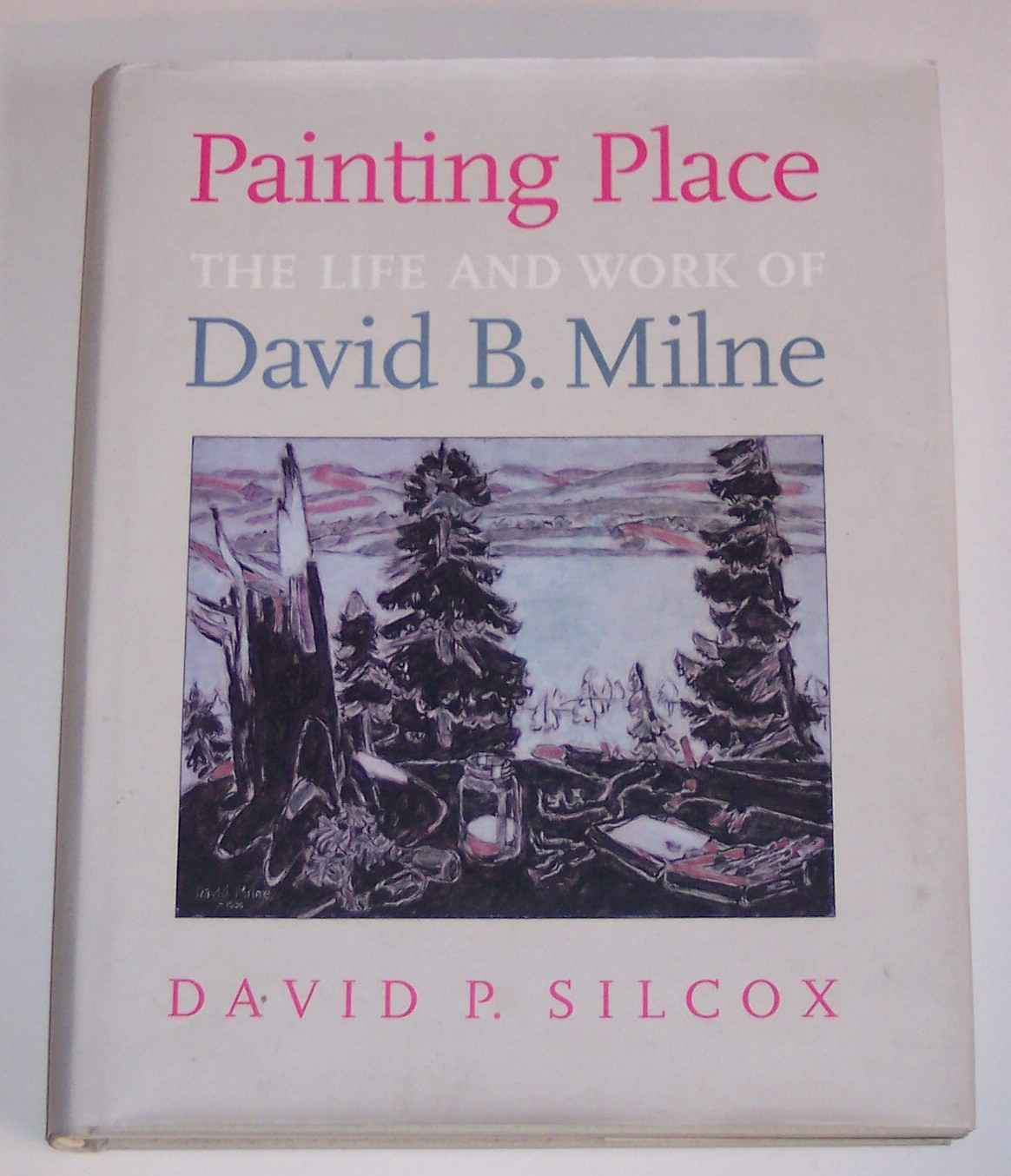 Image for Painting Place The Life and Work of David B. Milne
