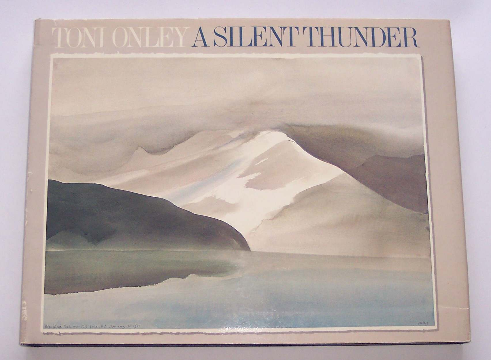 Image for Toni Onley: a Silent Thunder