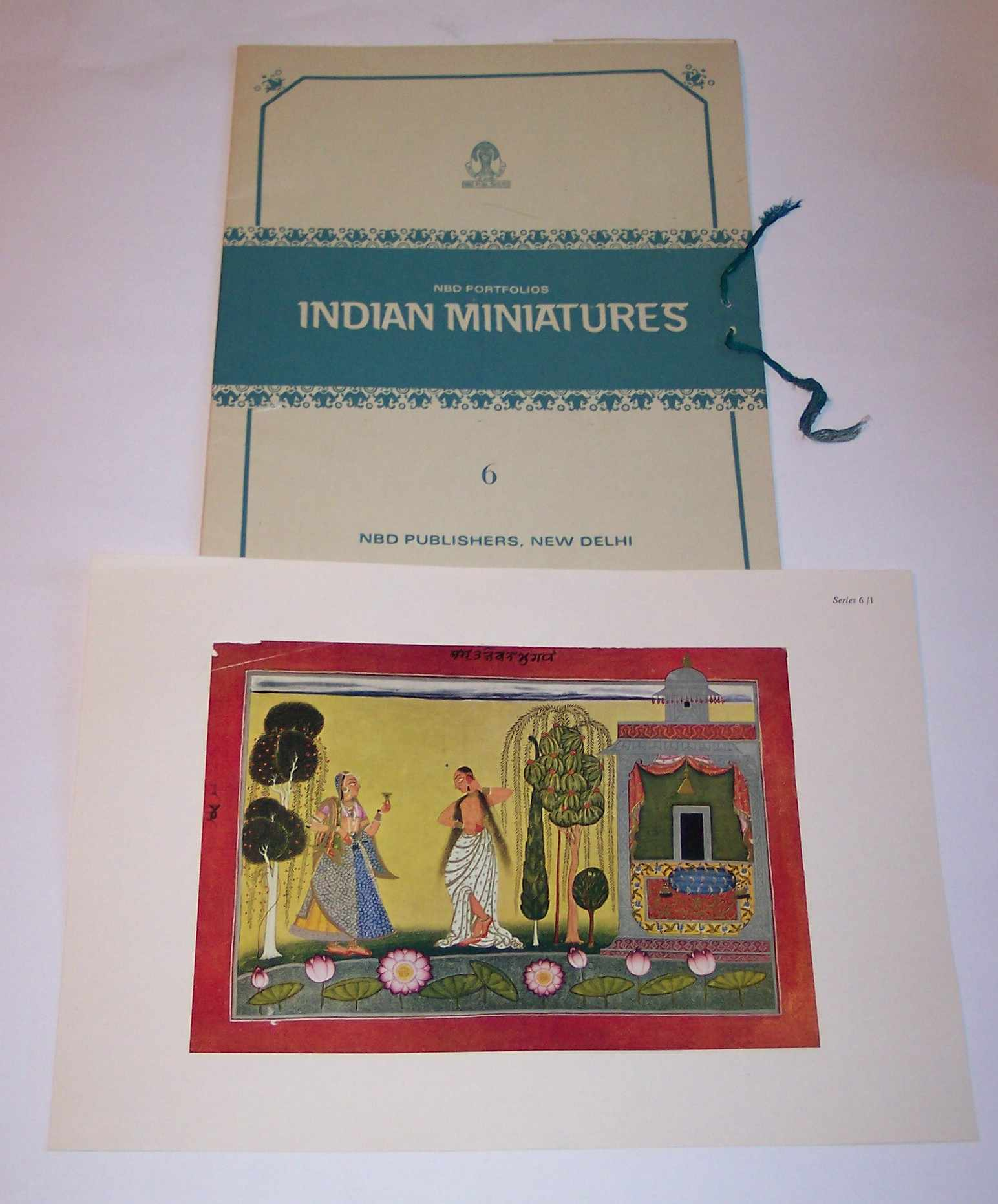 Image for NDB Publishers: Indian Miniatures Series 6