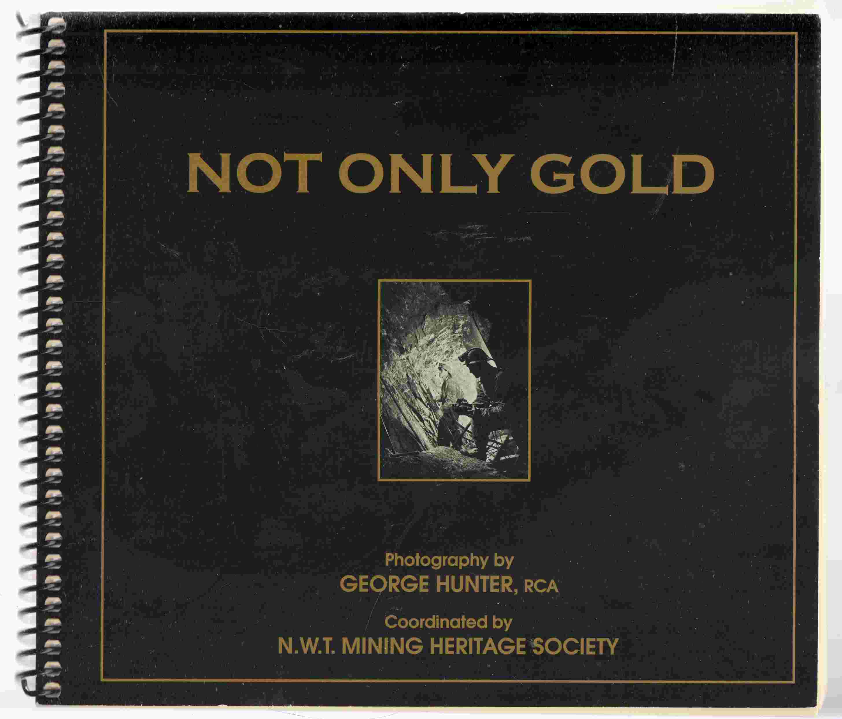 Image for Not Only Gold