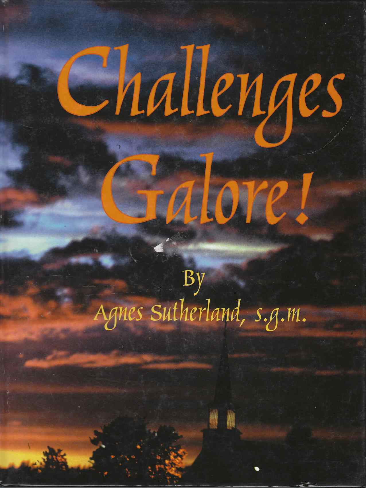 Image for Challenges Galore Biography, Family History, and Life in Northern Canada
