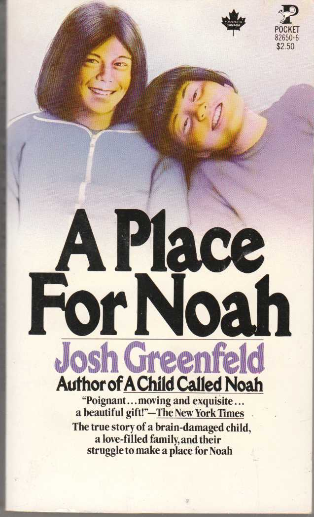 Image for A Place for Noah