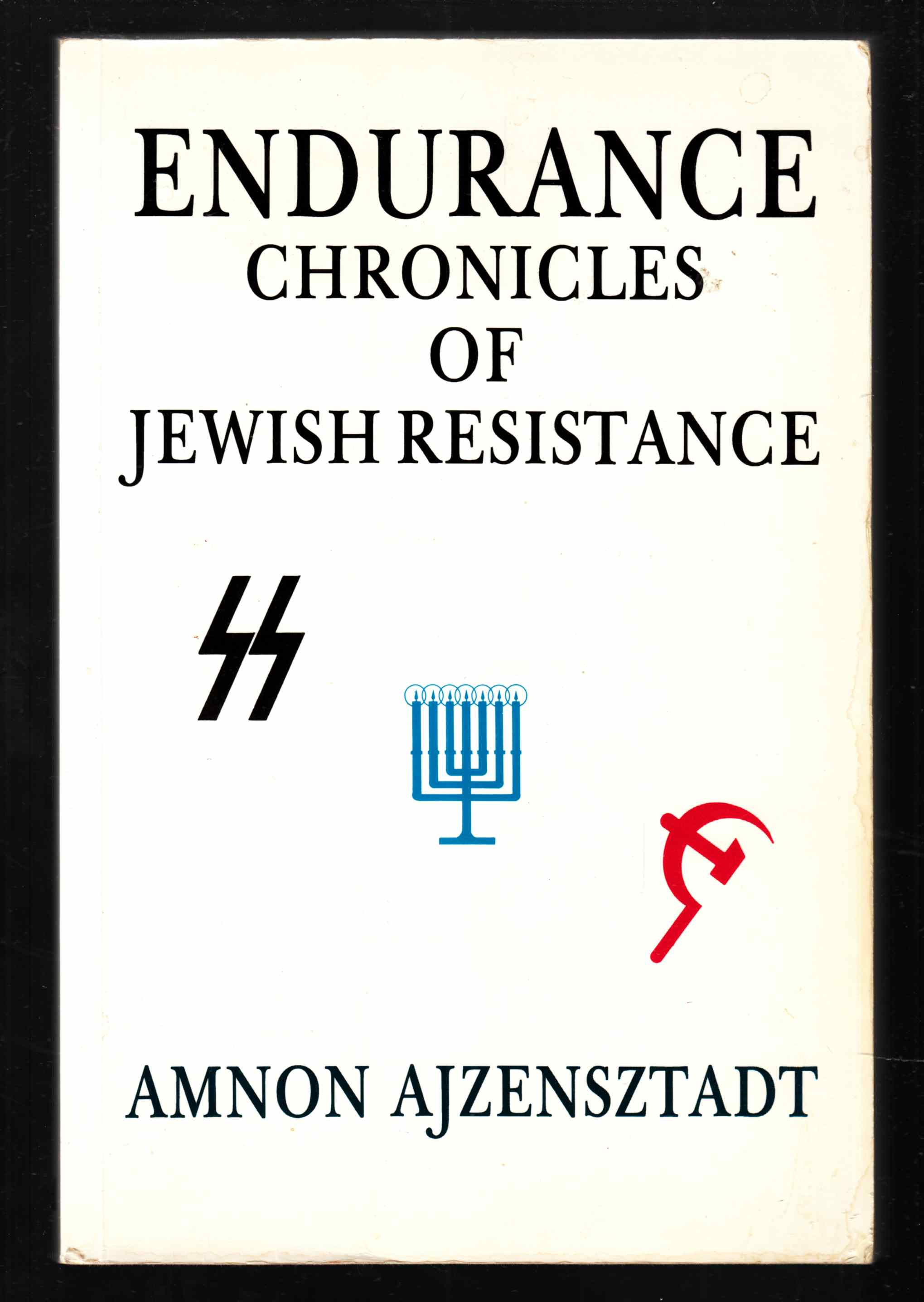 Image for Endurance Chronicles of Jewish Resistance
