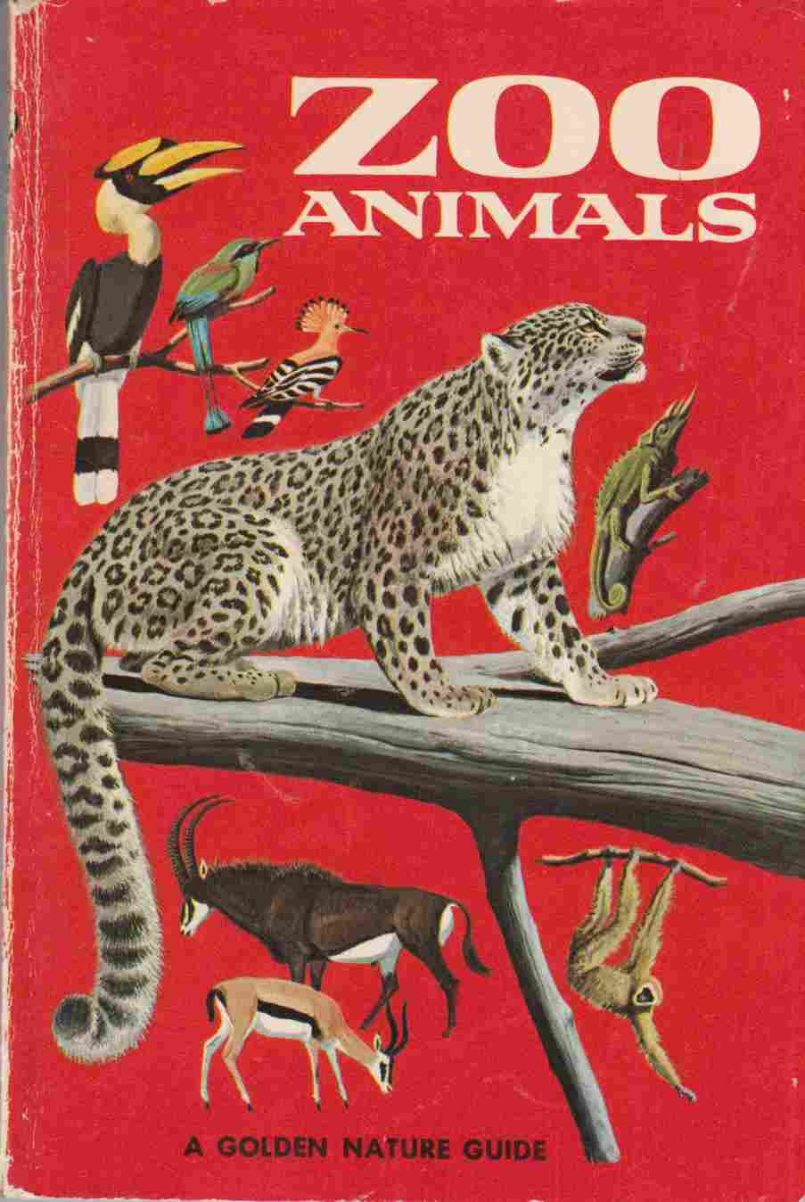 Image for Zoo Animals