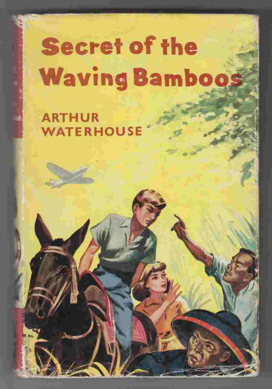 Image for Secret of the Waving Bamboos