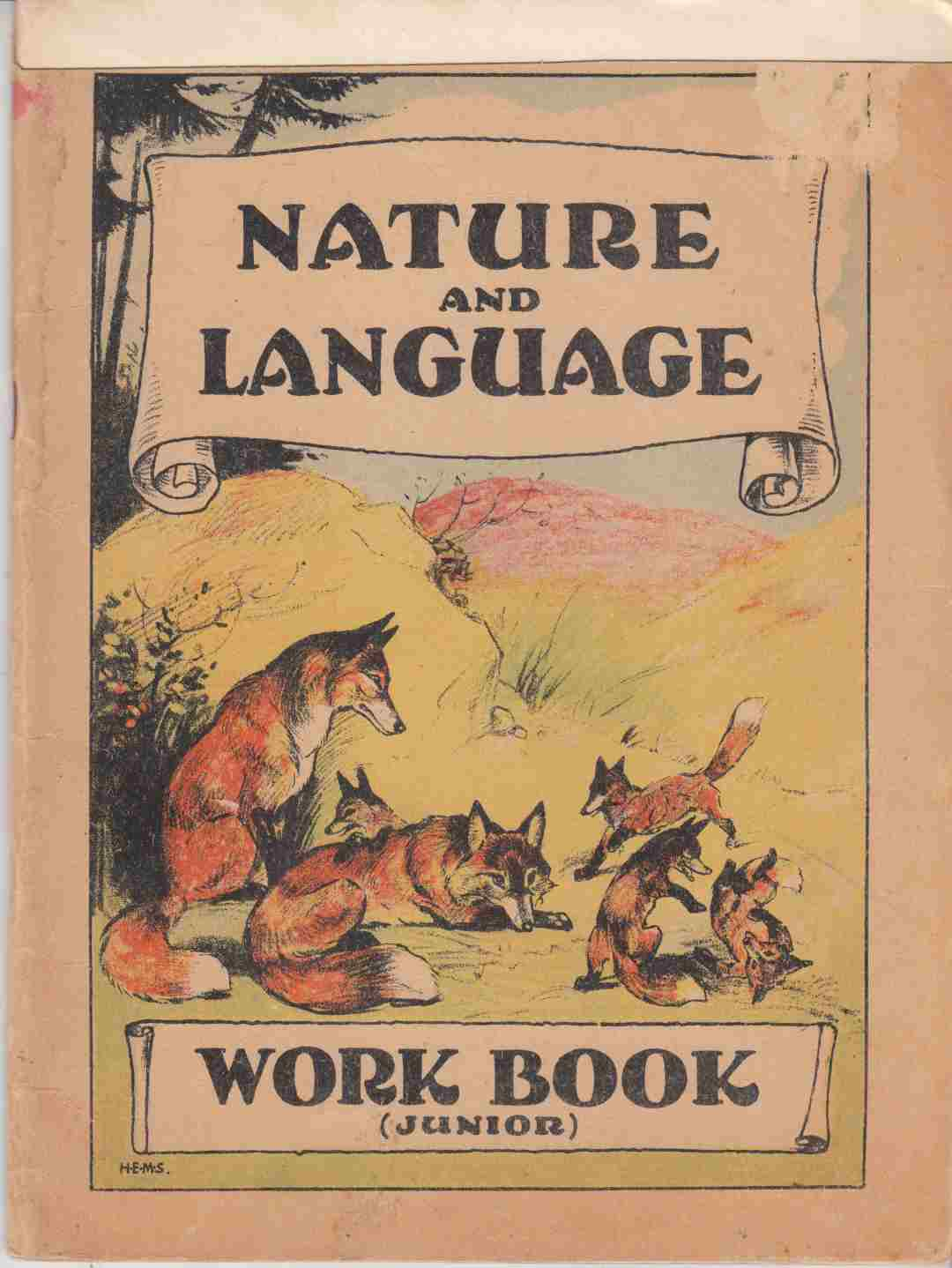 Image for Nature & Language Work Book: Junior Book