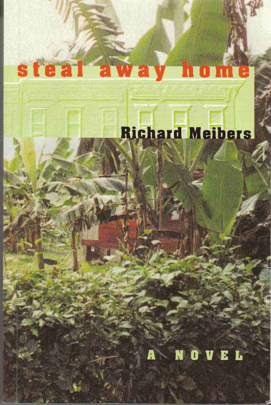 Image for Steal Away Home