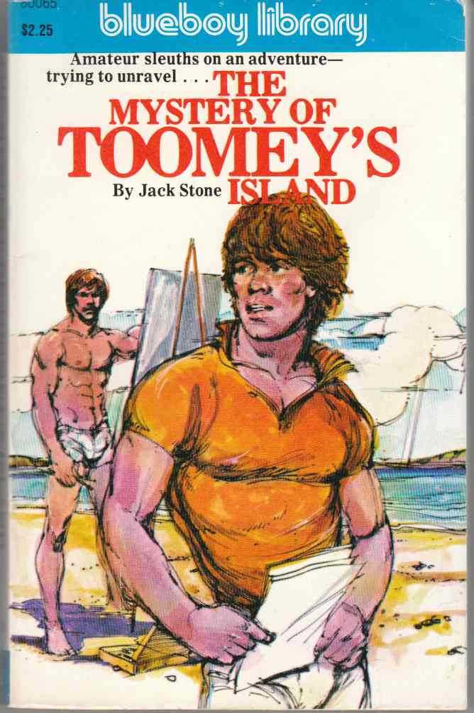 Image for The Mystery of Toomey's Island