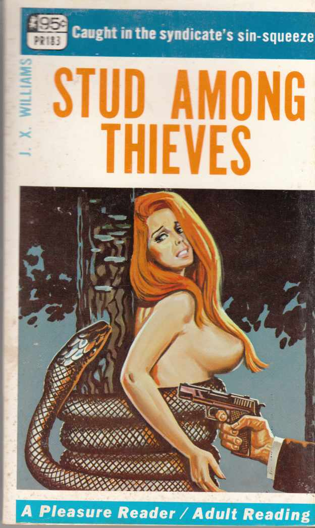 Image for Stud Among Thieves