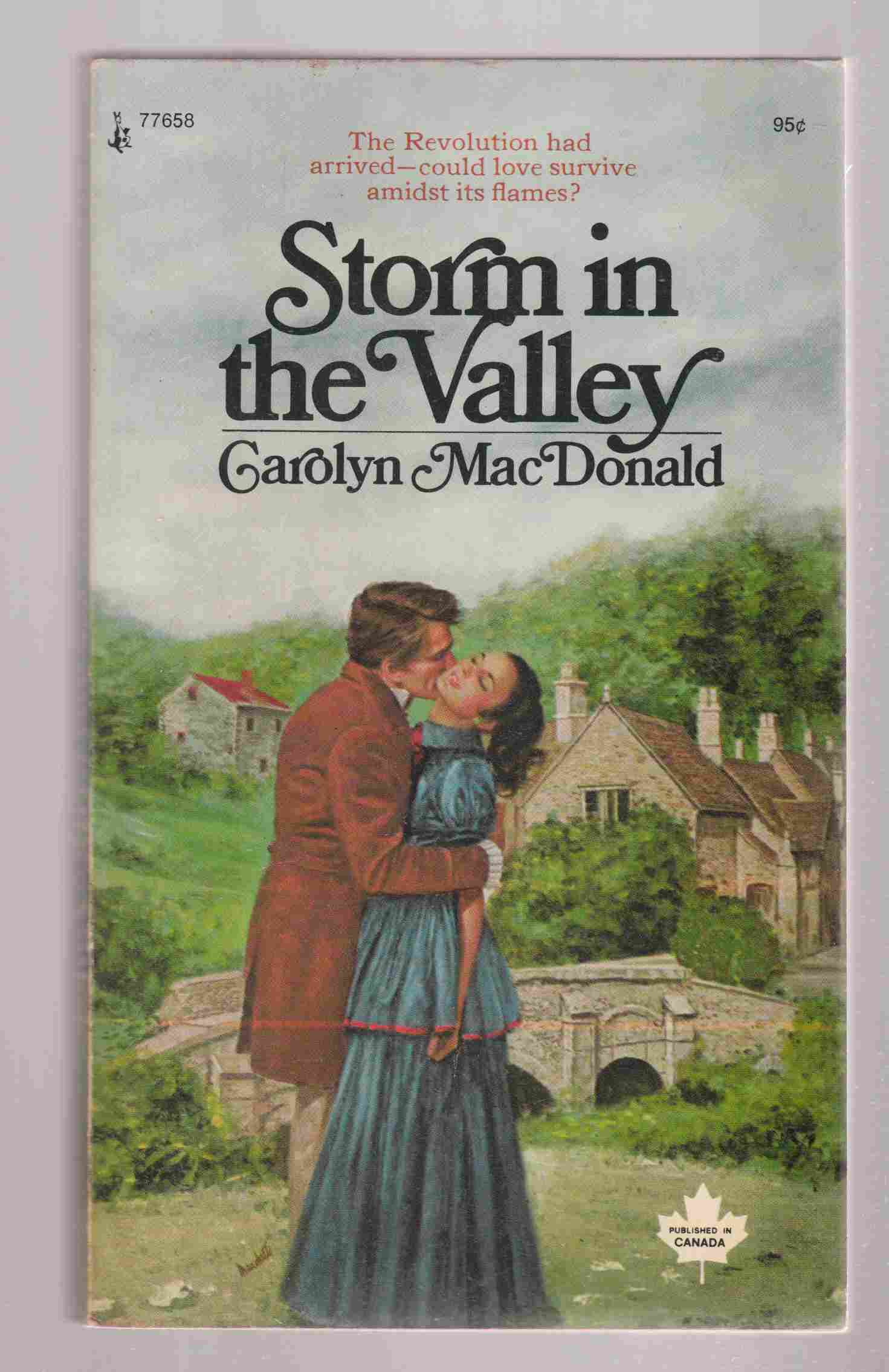 Image for Storm in the Valley