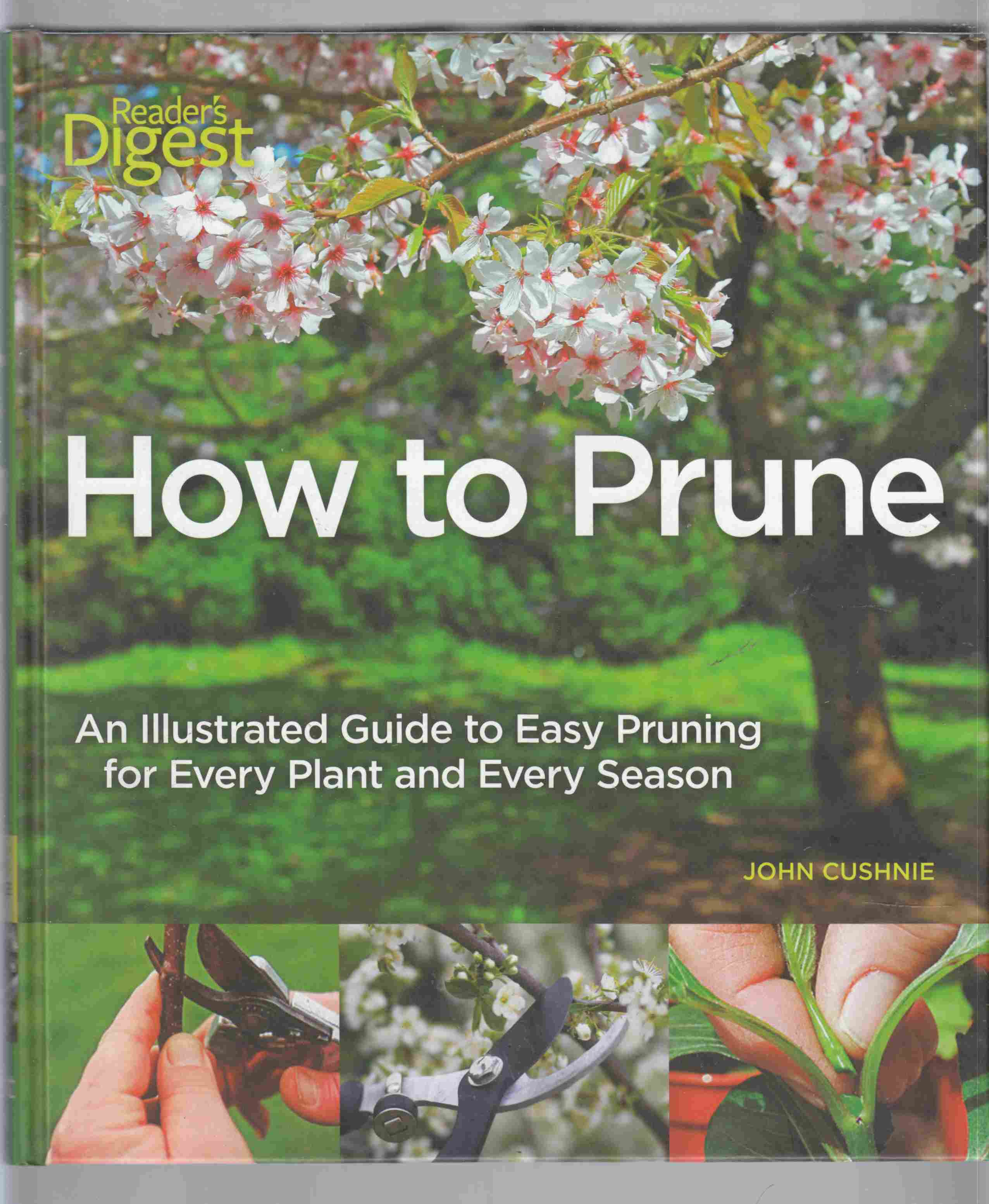 Image for How to Prune