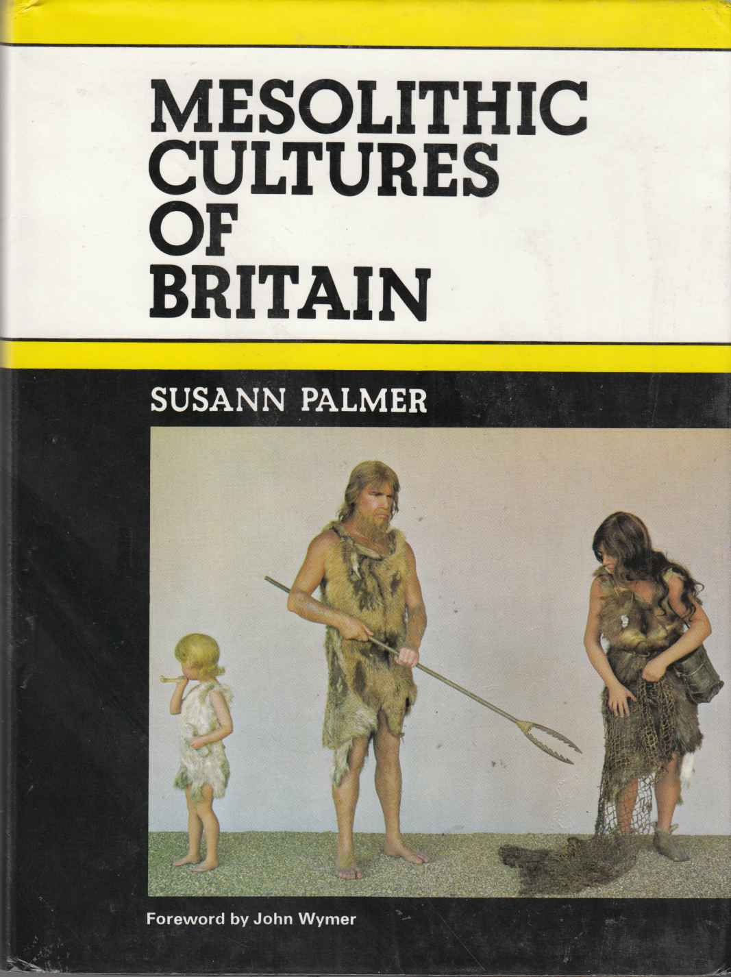 Image for Mesolithic Cultures of Britain