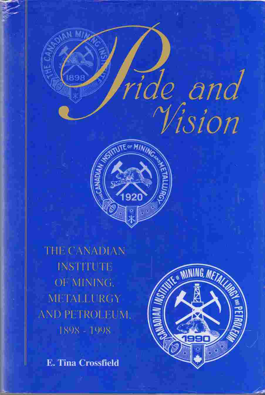 Image for Pride and Vision The Canadian Institute of Mining, Mettalurgy and Petroleum, 1989 - 1998
