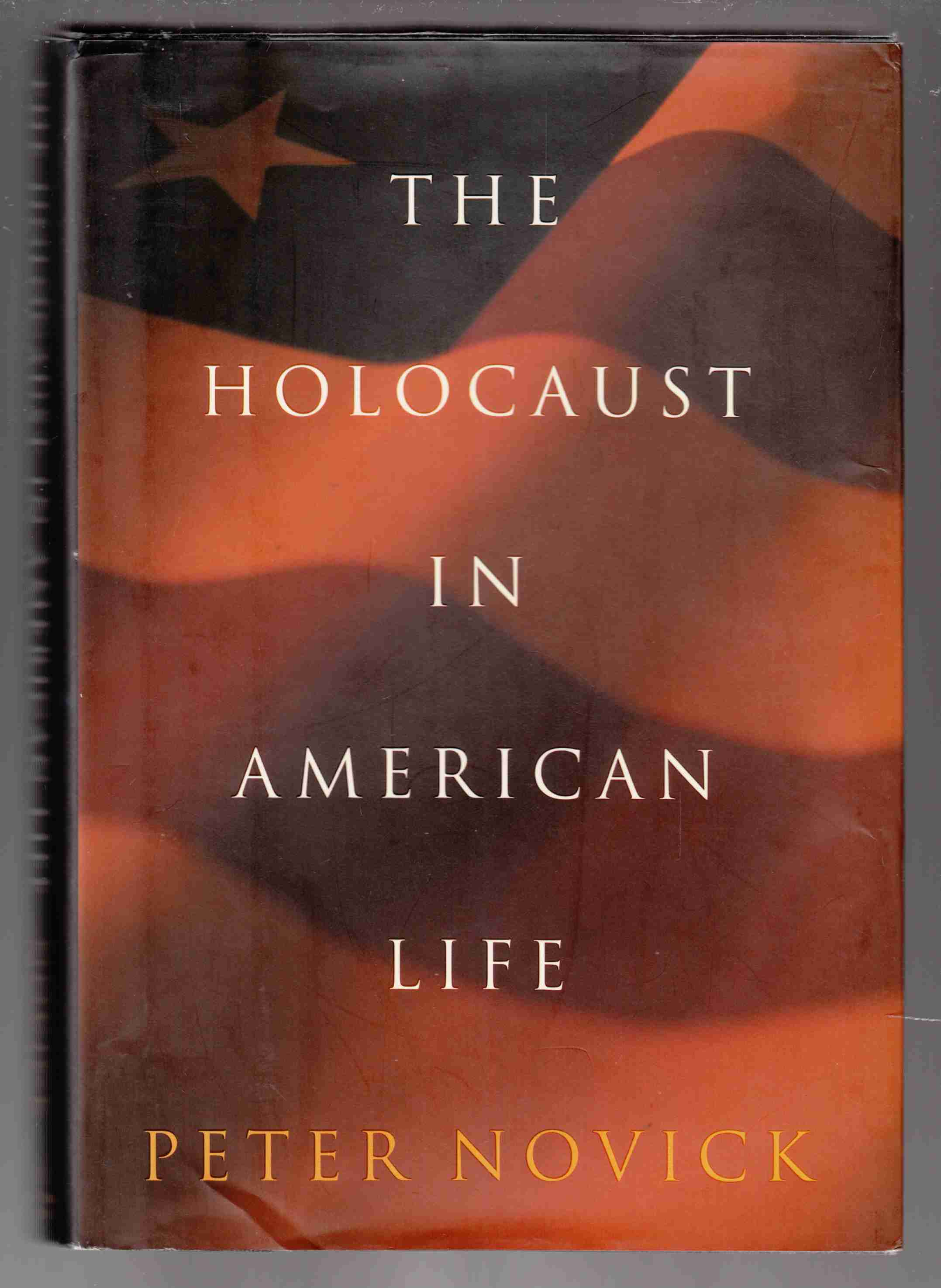 Image for The Holocaust in American Life