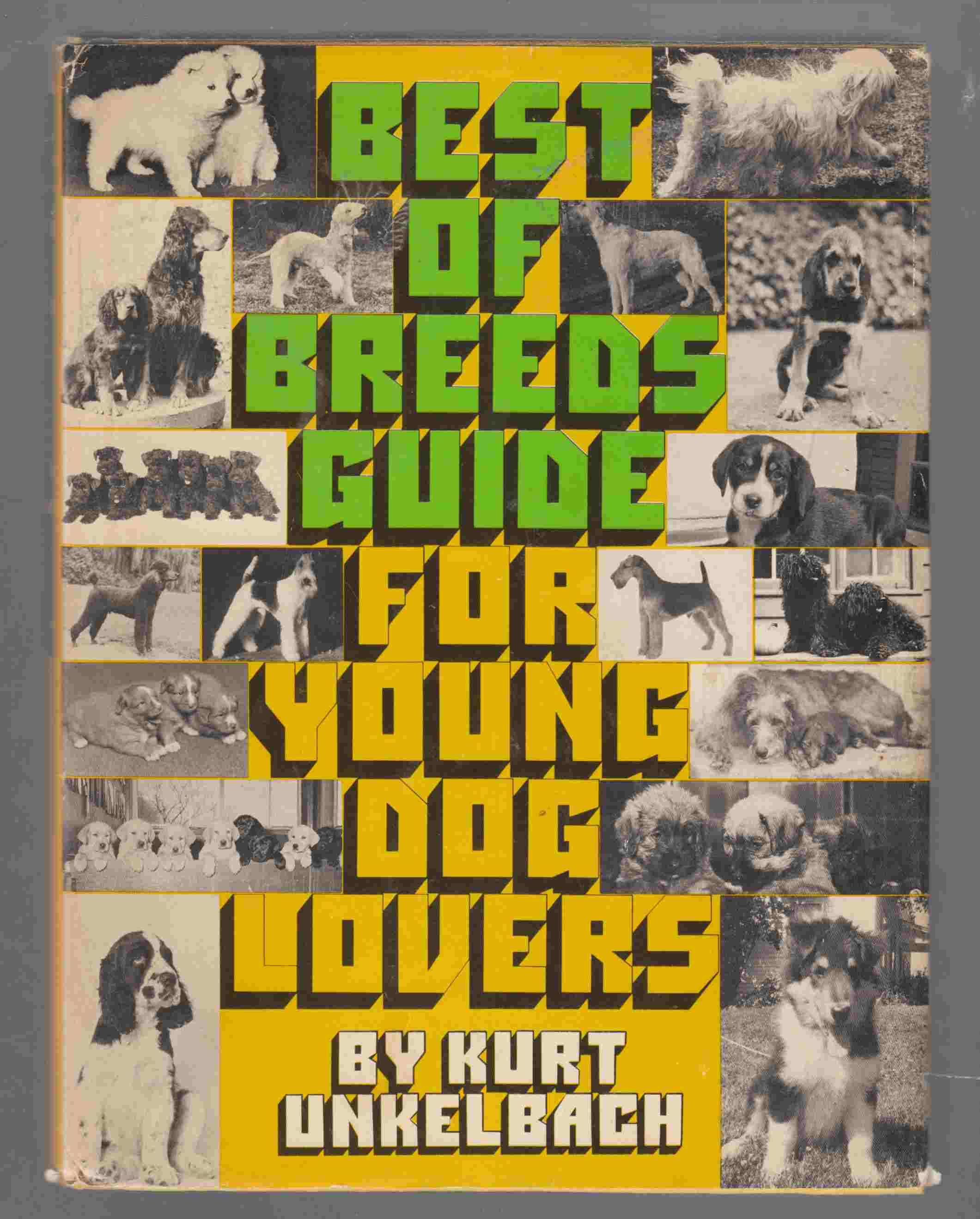 Image for Best-of-Breeds Guide for Young Dog Lovers