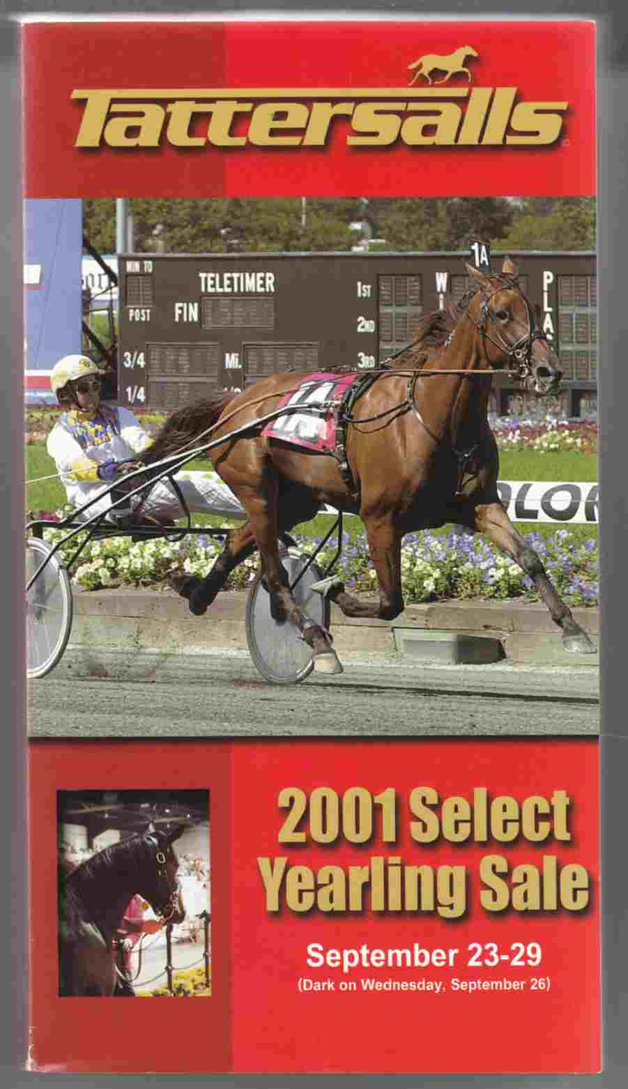 Image for Tattersalls 2001 Select Yearling Sale