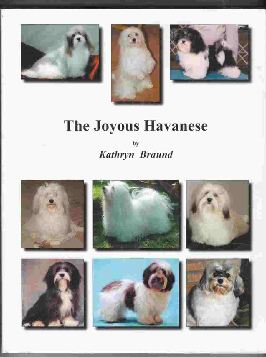 Image for The Joyous Havanese
