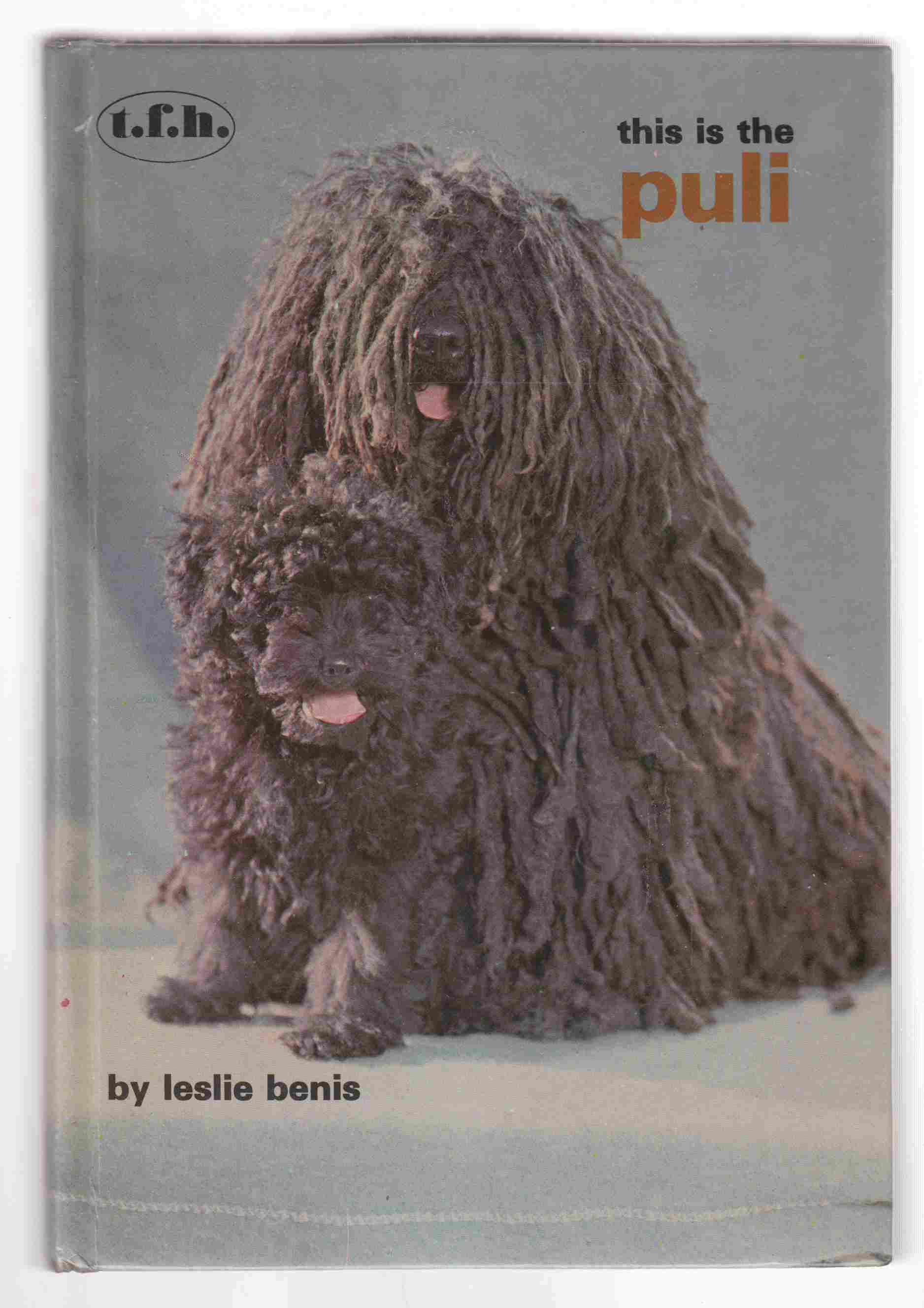 Image for This is the Puli
