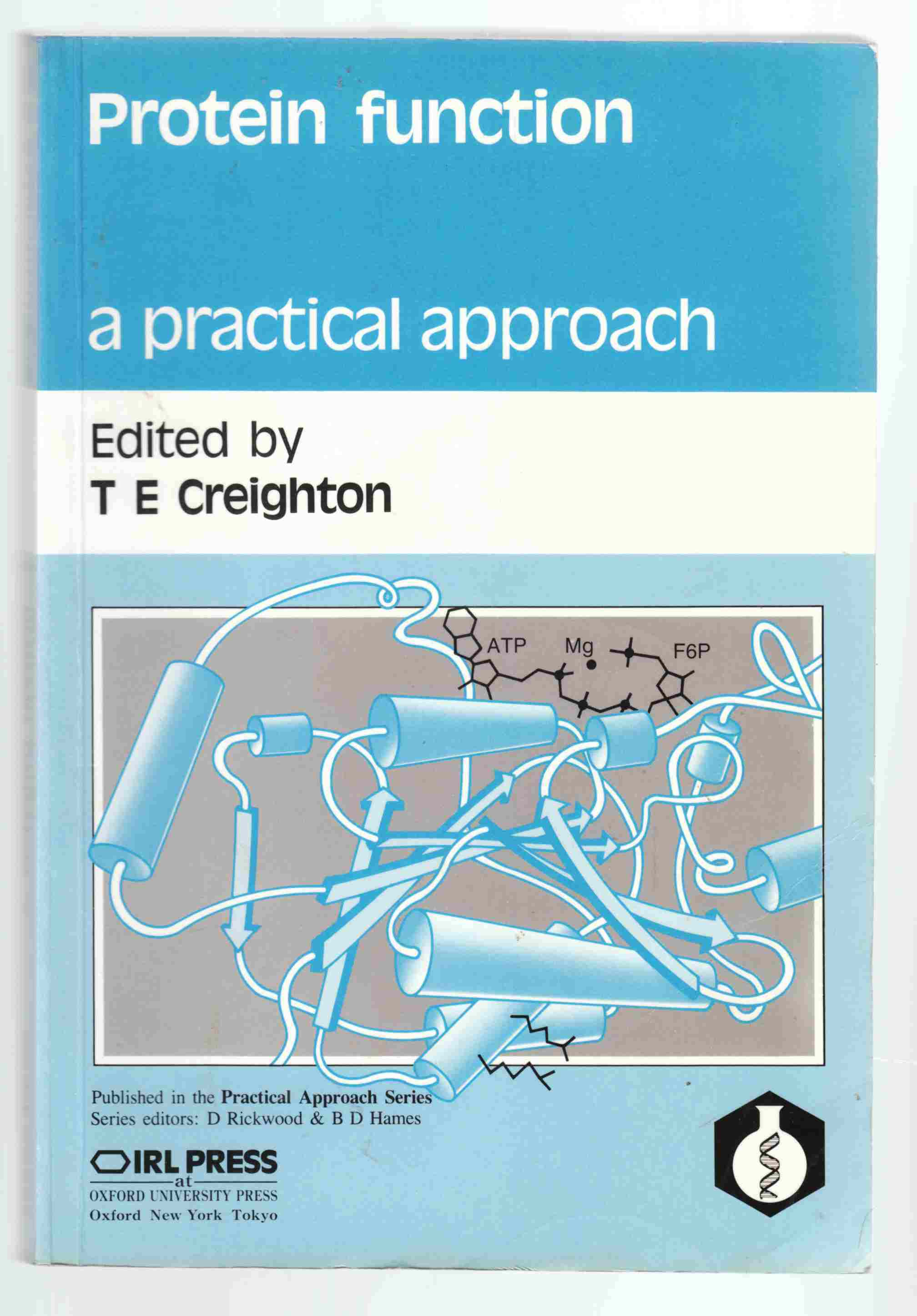 Image for Protein Function A Practical Approach