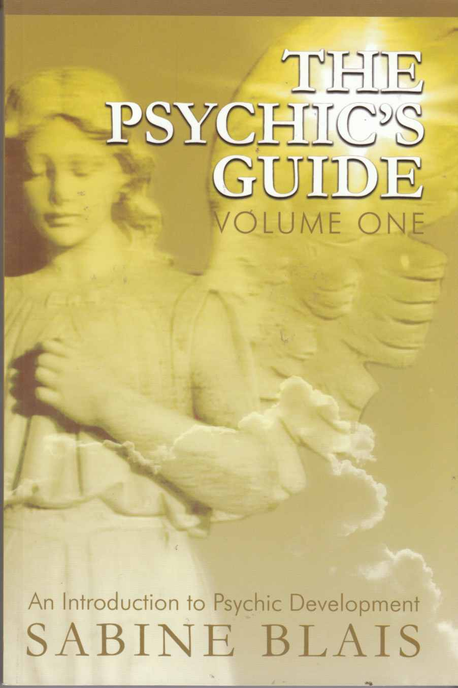 Image for The Psychic's Guide: Volume One - An Introduction to Psychic Development