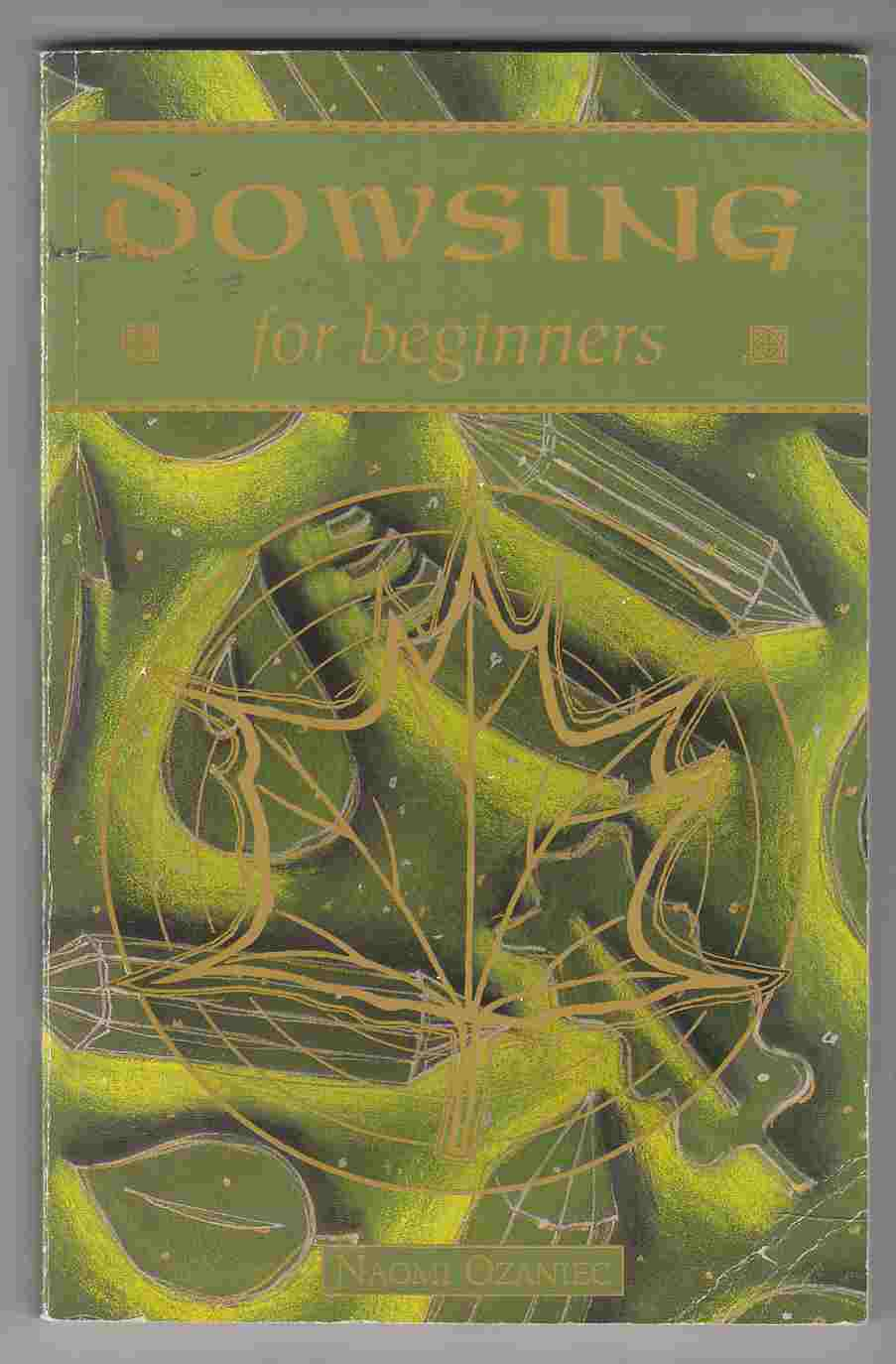 Image for Dowsing for Beginners