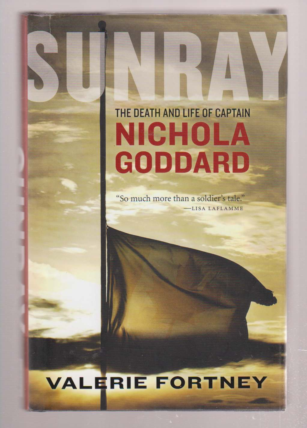 Image for Sunray  The Death and Life of Captain Nichola Goddard