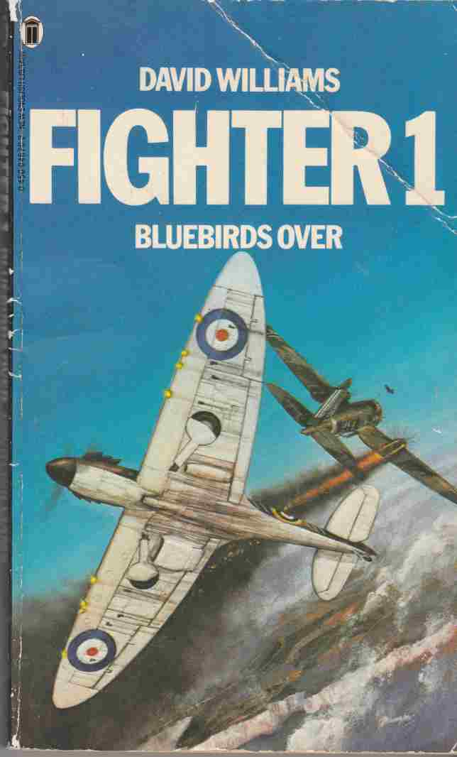Image for Fighter 1: Bluebirds Over