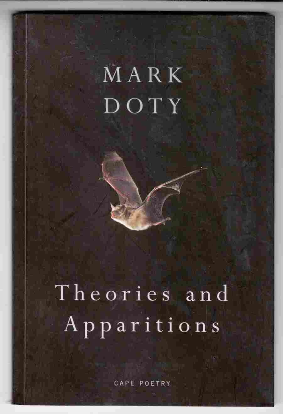 Image for Theories and Apparitions