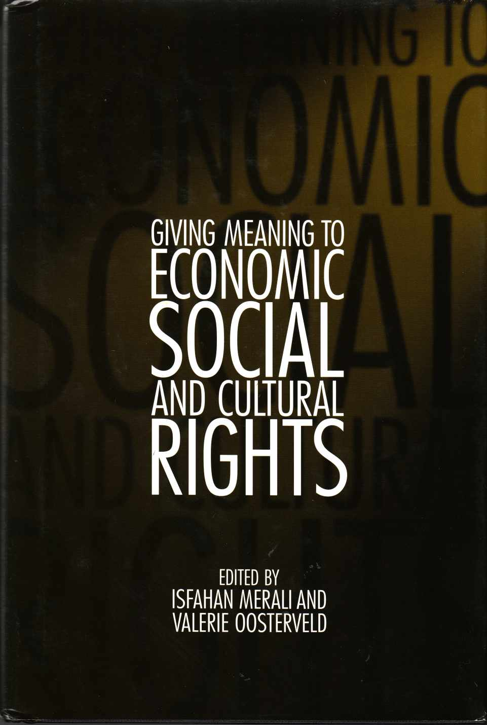 Image for Giving Meaning to Economic, Social and Cultural Rights