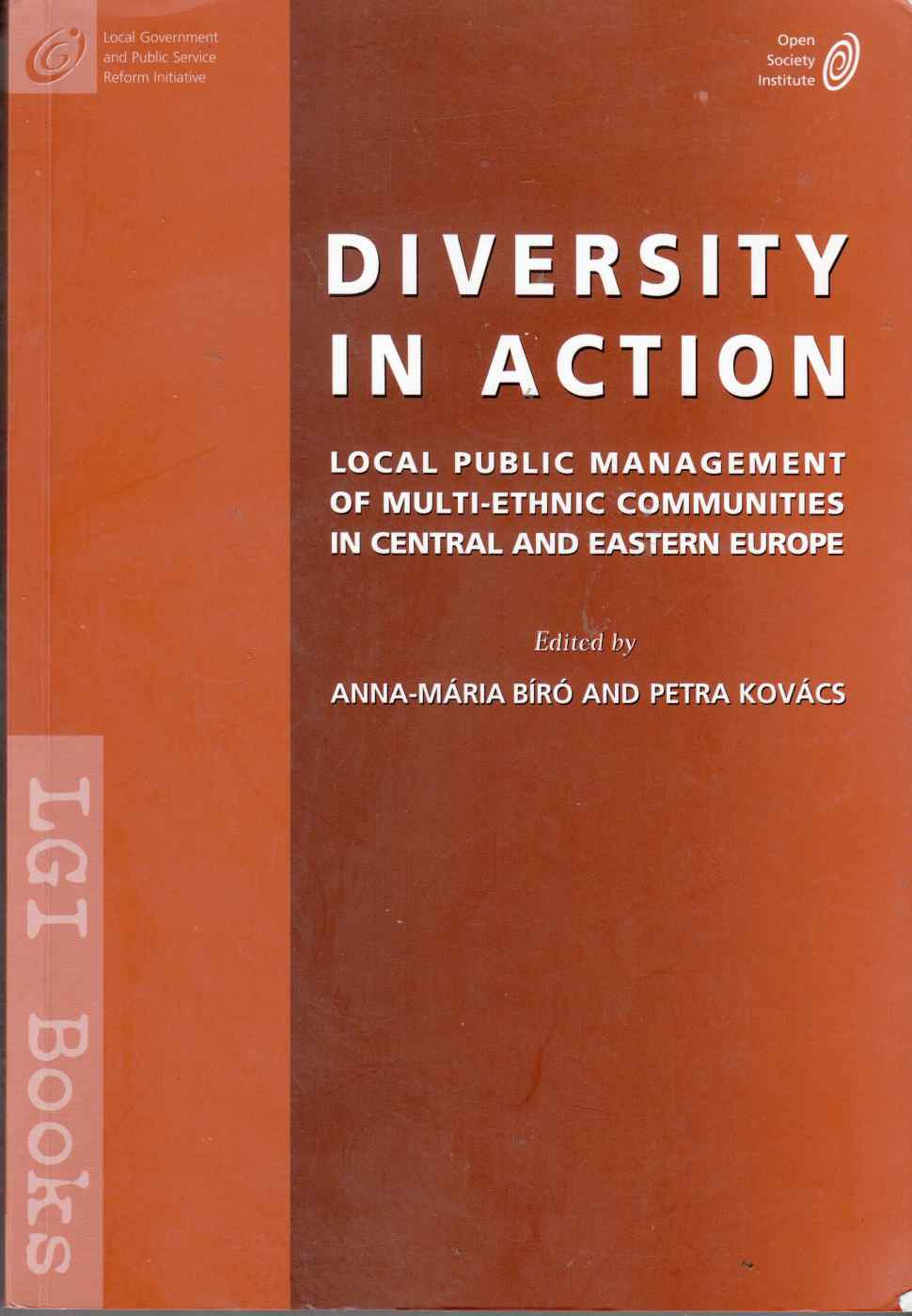 Image for Diversity in Action Local Public Management of Multi-Ethnic Communities in Central and Eastern Europe