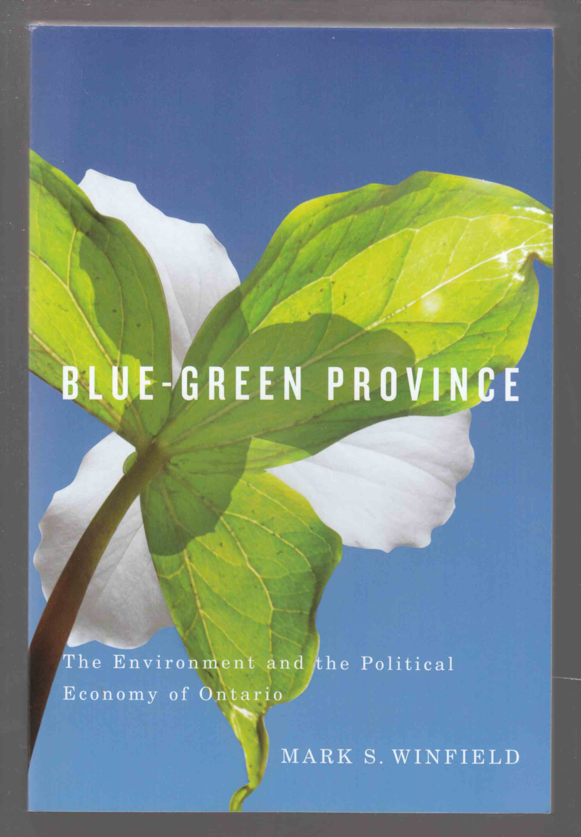 Image for Blue-Green Province The Environment and the Political Economy of Ontario