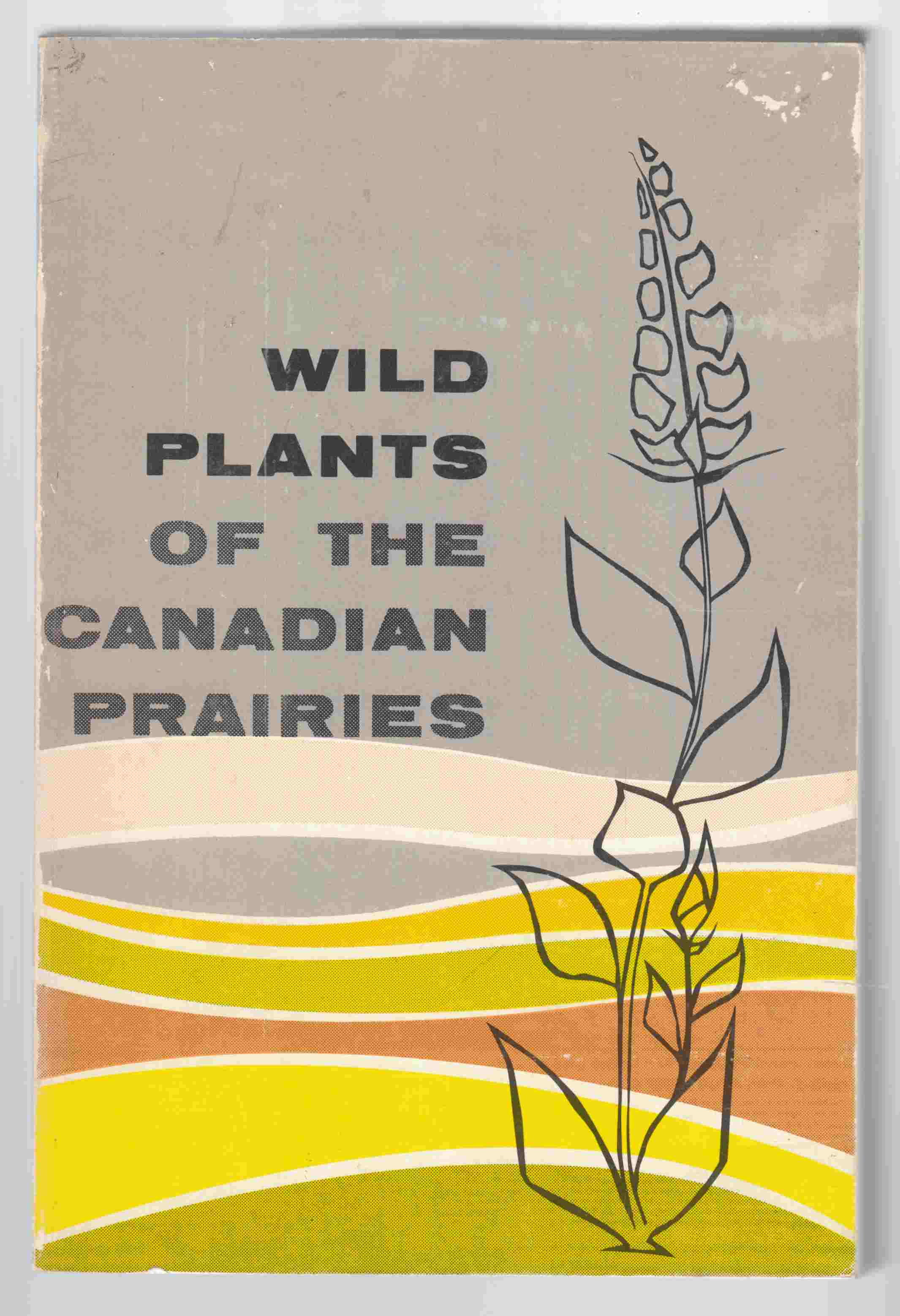 Image for Wild Plants of the Canadian Prairies