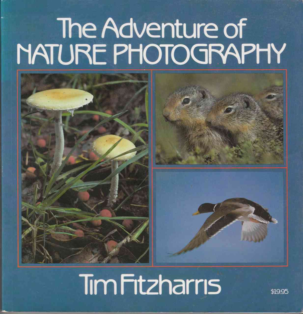 Image for The Adventure of Nature Photography