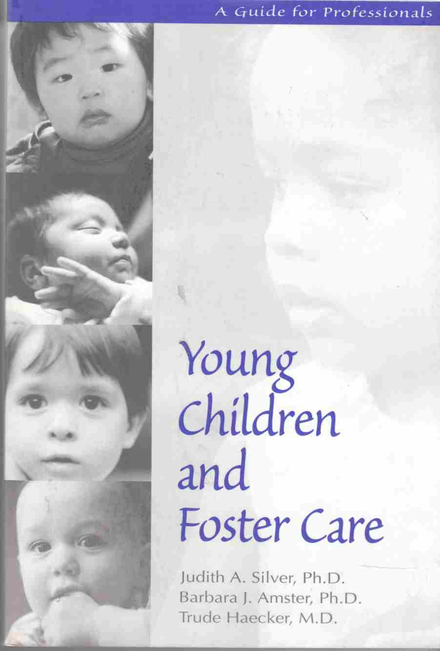 Image for Young Children and Foster Care A Guide for Professionals