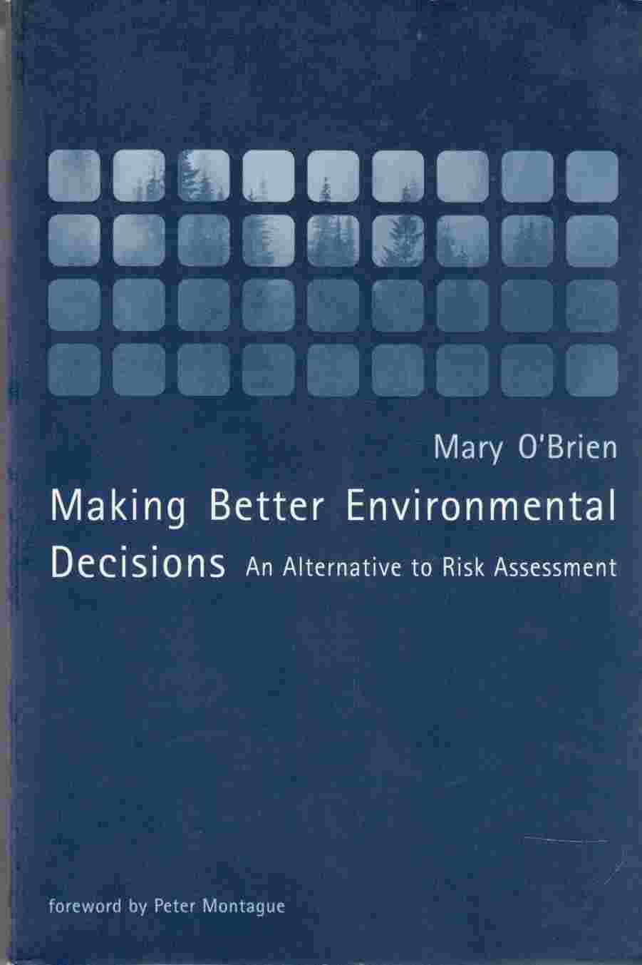 Image for Making Better Environmental Decisions An Alternative to Risk Assessment
