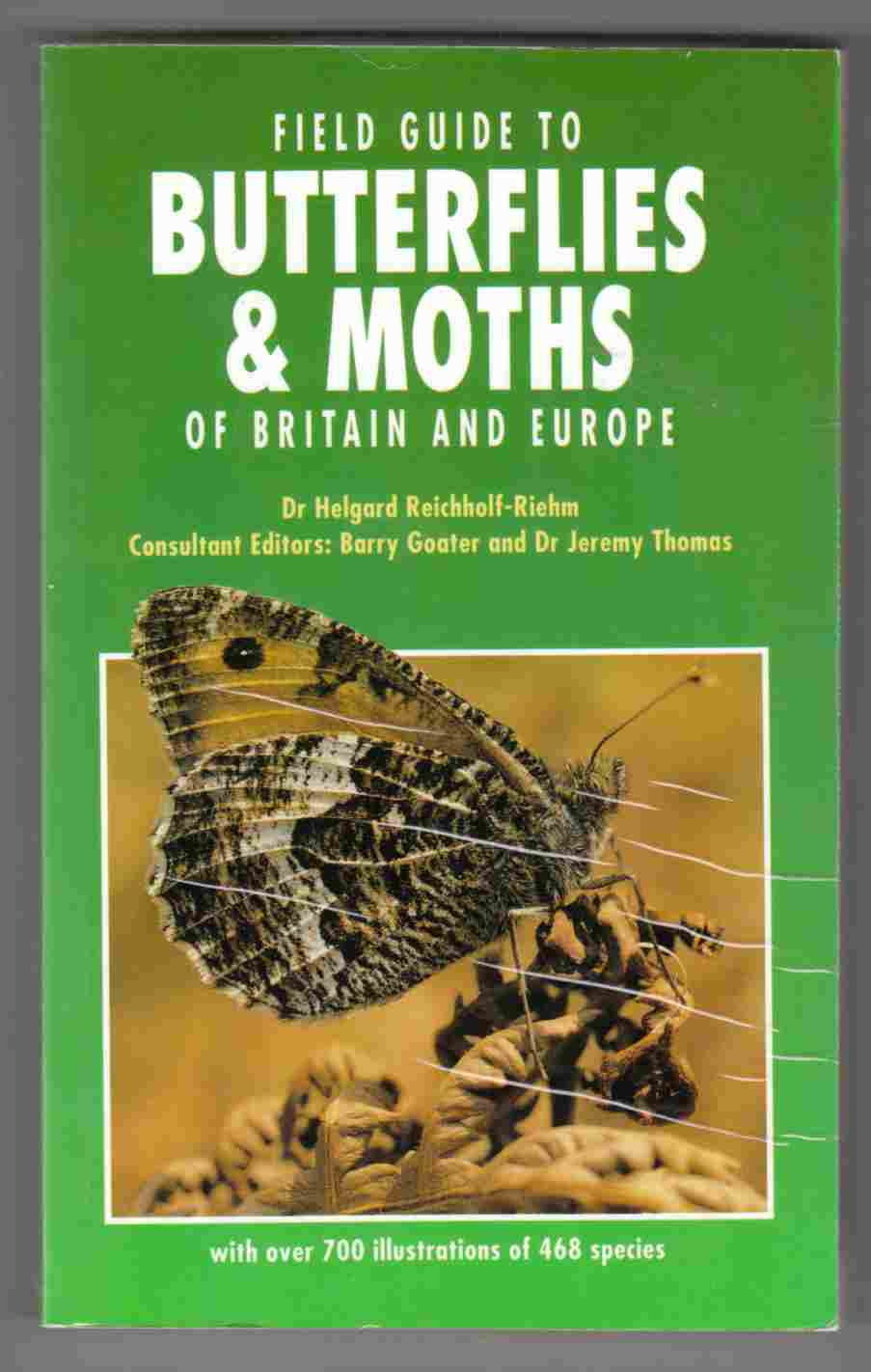 Image for Field Guide to Butterflies and Moths of Britain and Europe