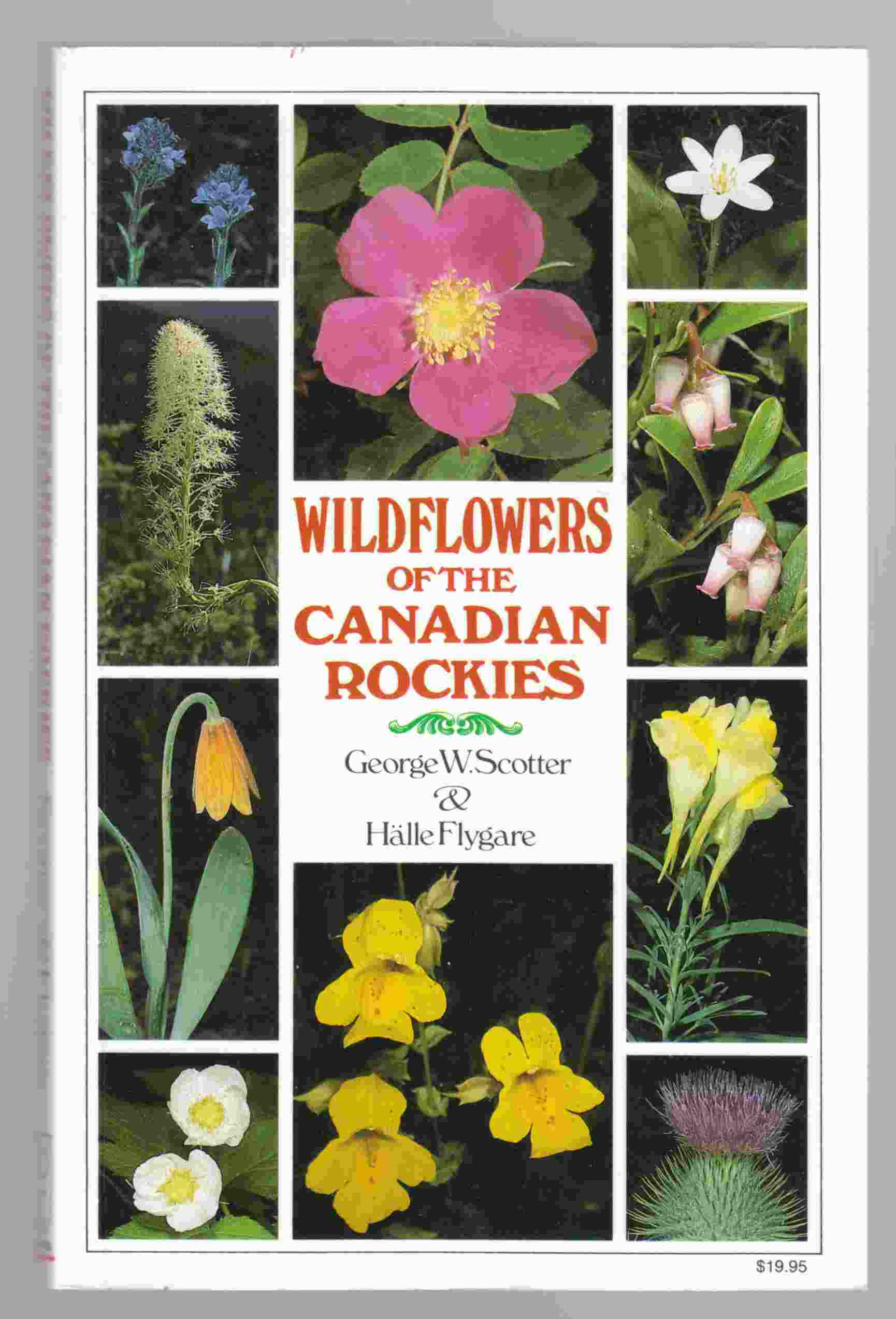 Image for Wildflowers of the Canadian Rockies