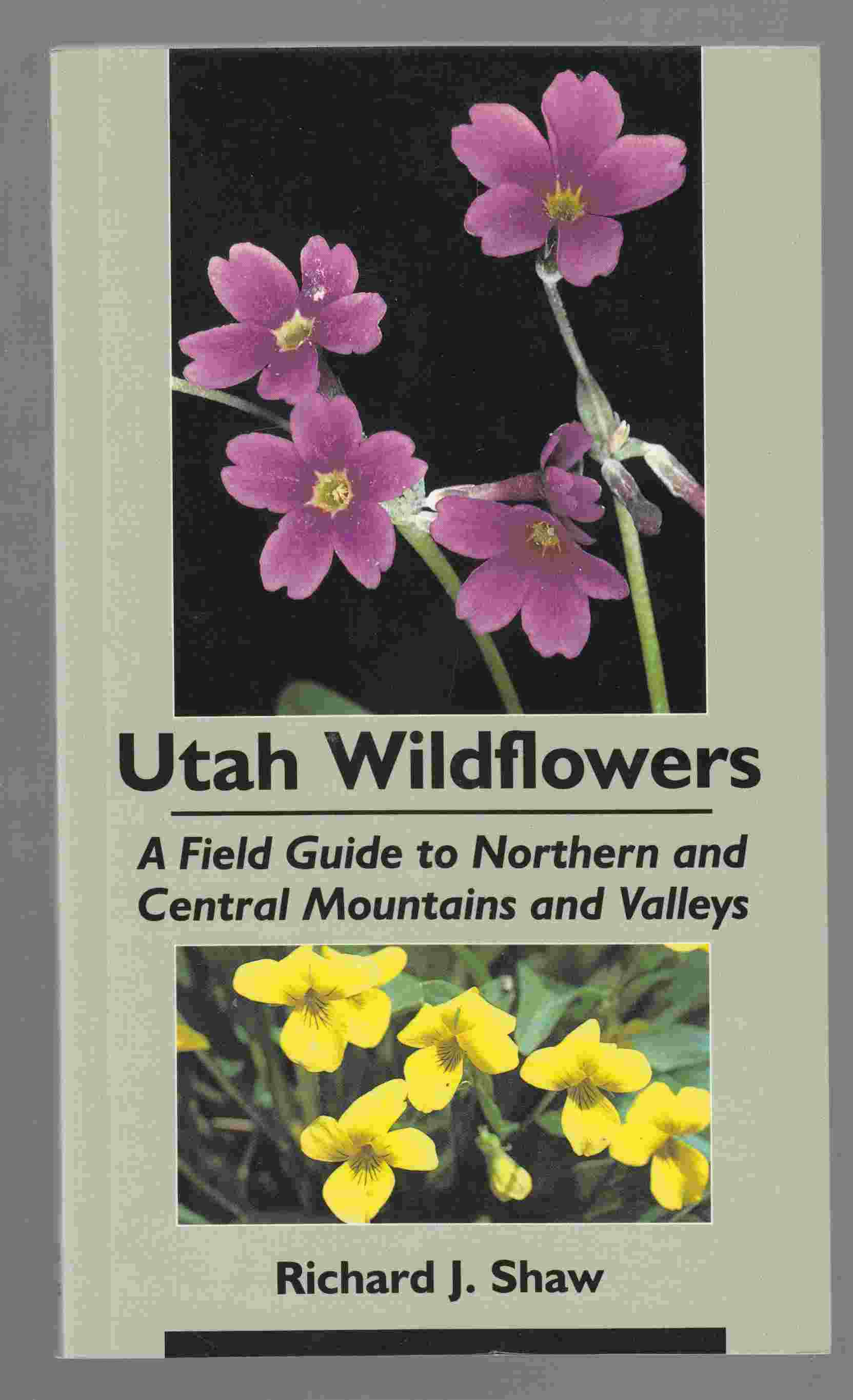 Image for Utah Wildflowers A Field Guide to Northern and Central Mountains and Valleys