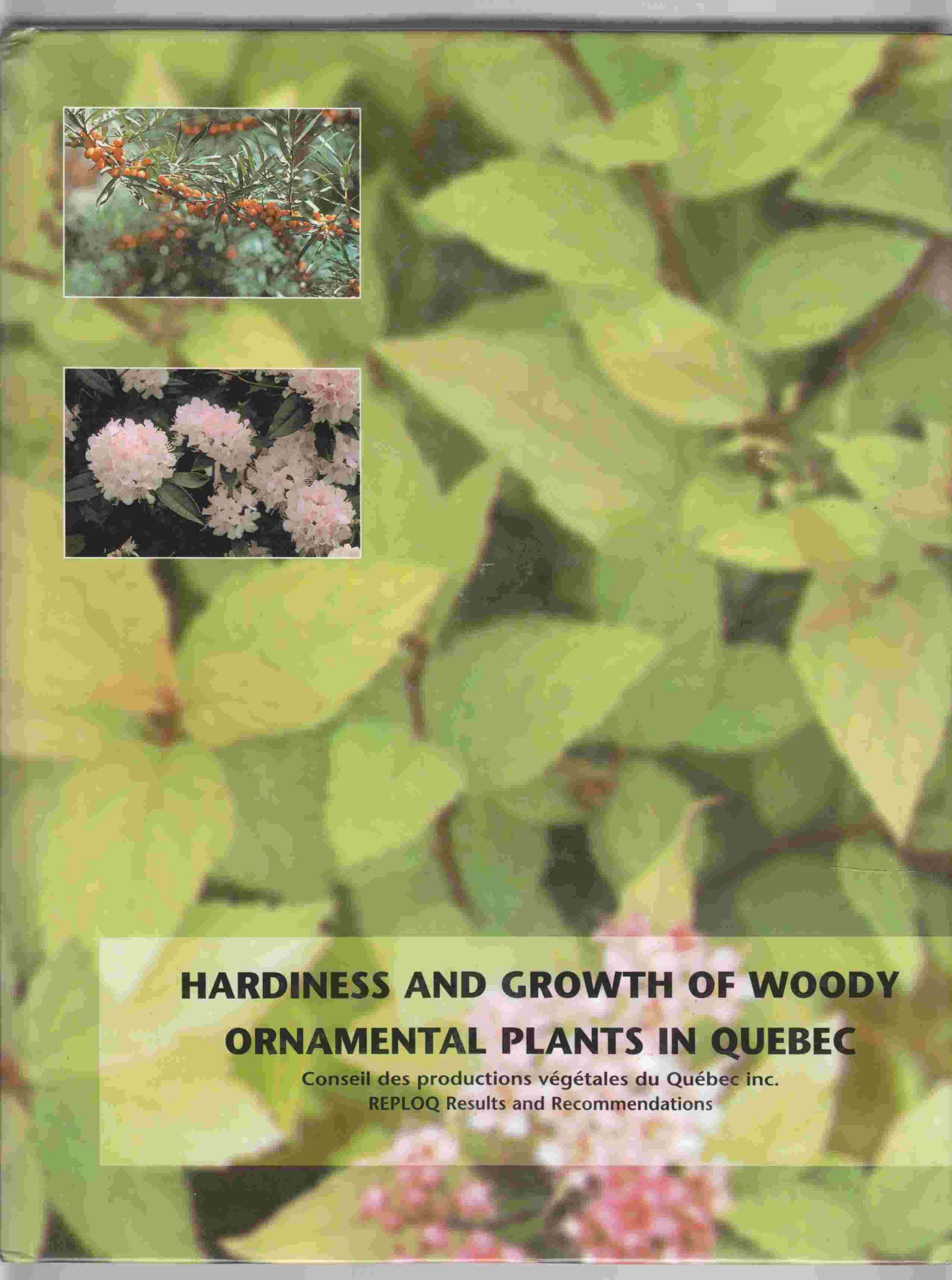 Image for Hardiness and Growth of Woody Ornamental Plants in Quebec REPLOQ Results and Recommendations