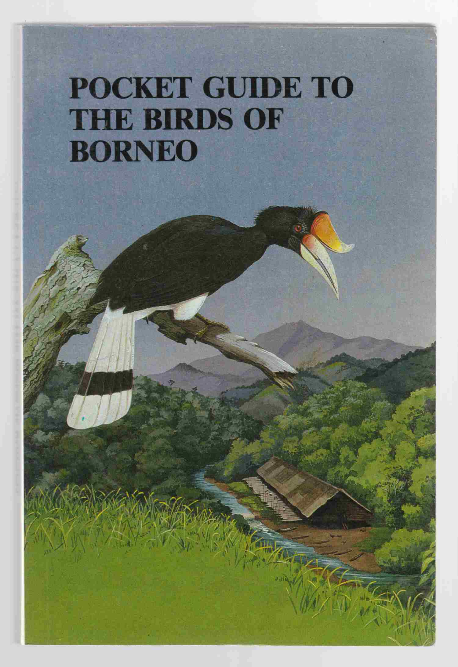 Image for Pocket Guide to the Birds of Borneo