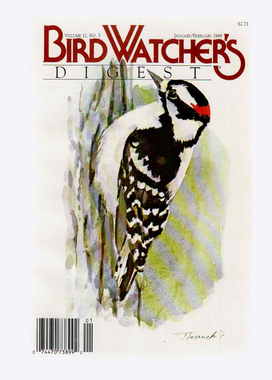 Image for Bird Watcher's Digest January/february 1989 Volume 11, No. 3