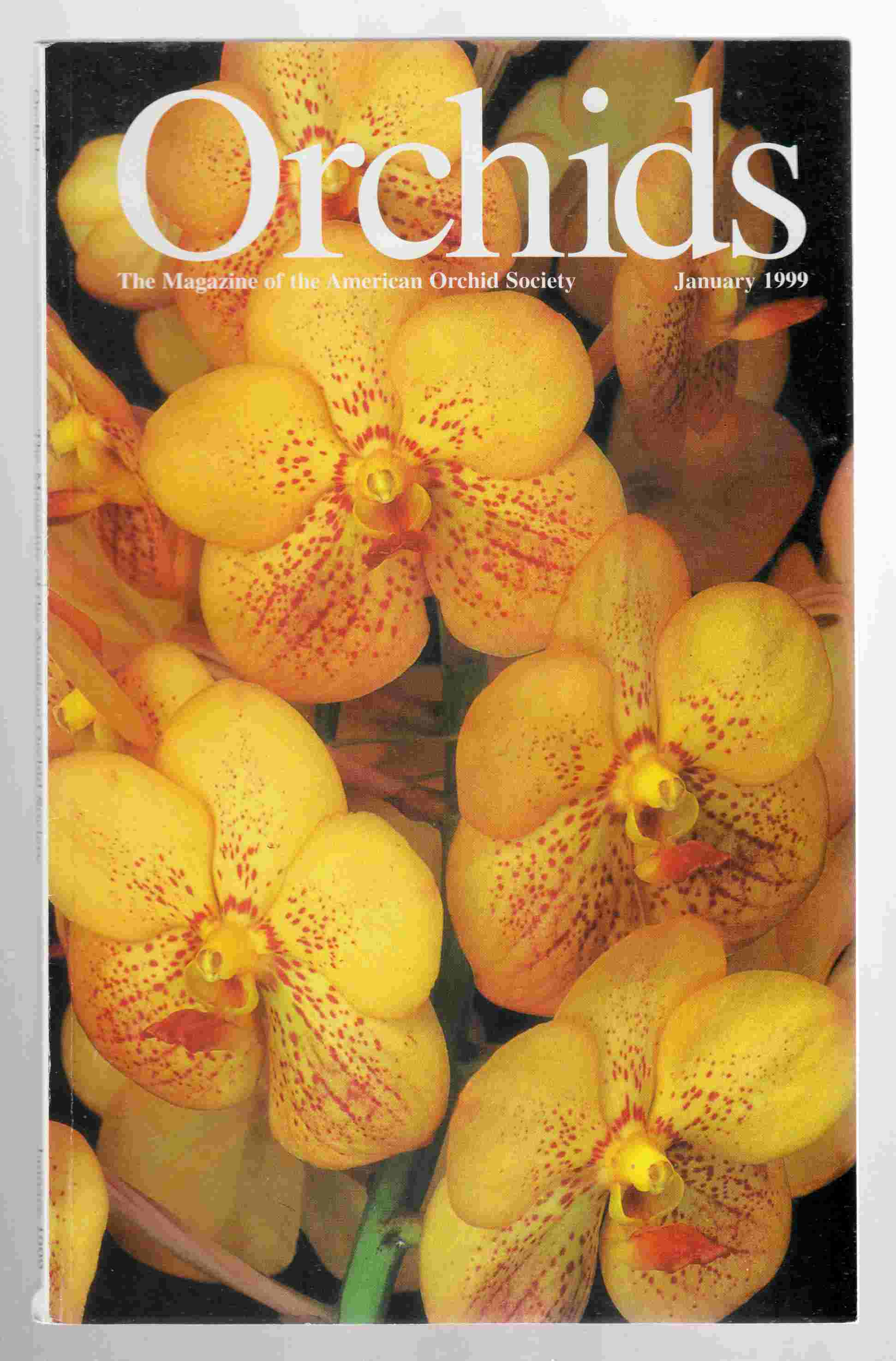 Image for Orchids Magazine Vol. 68, No. 1 January 1999