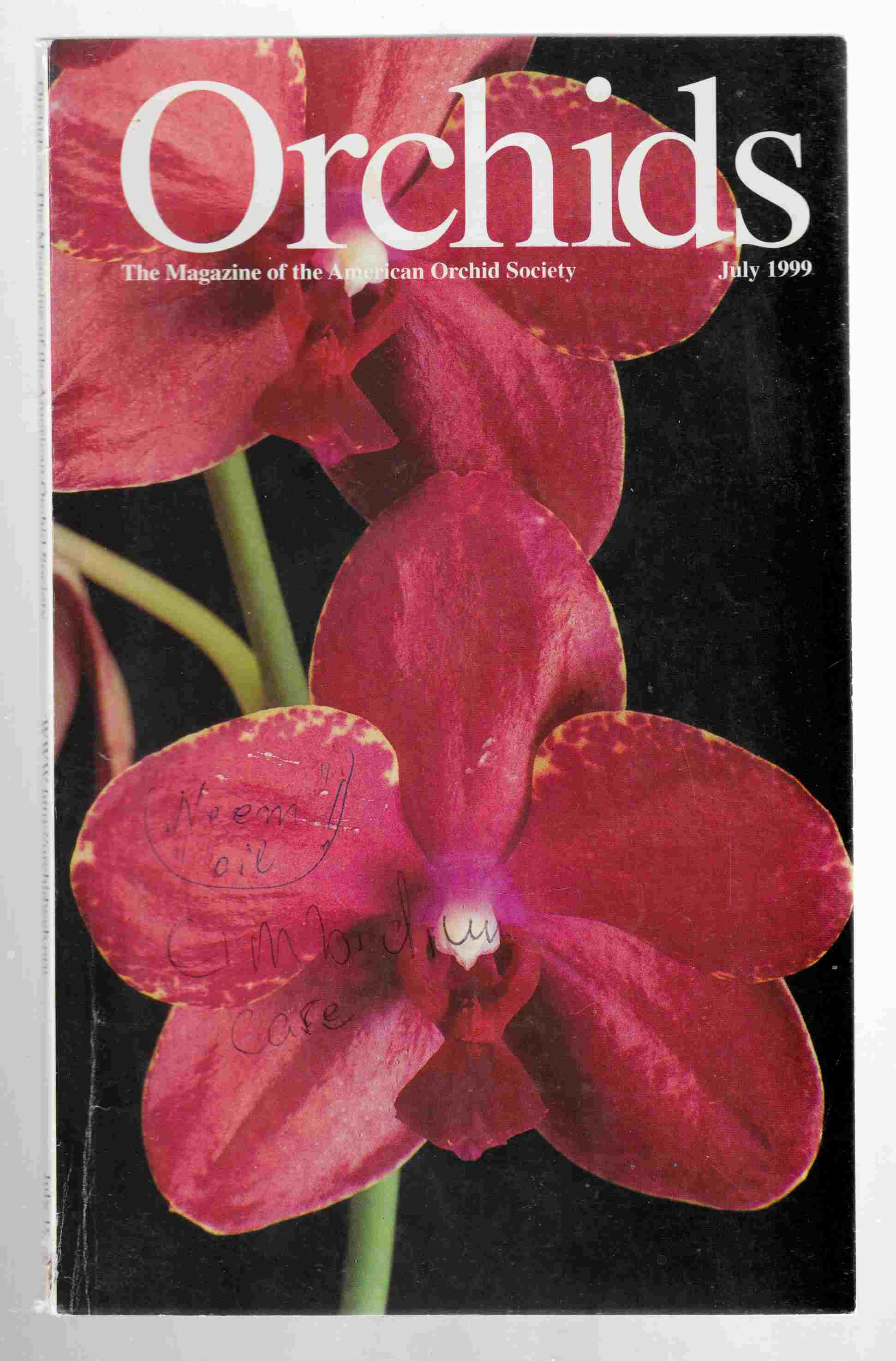 Image for Orchids Vol. 68, No. 7 July 1999