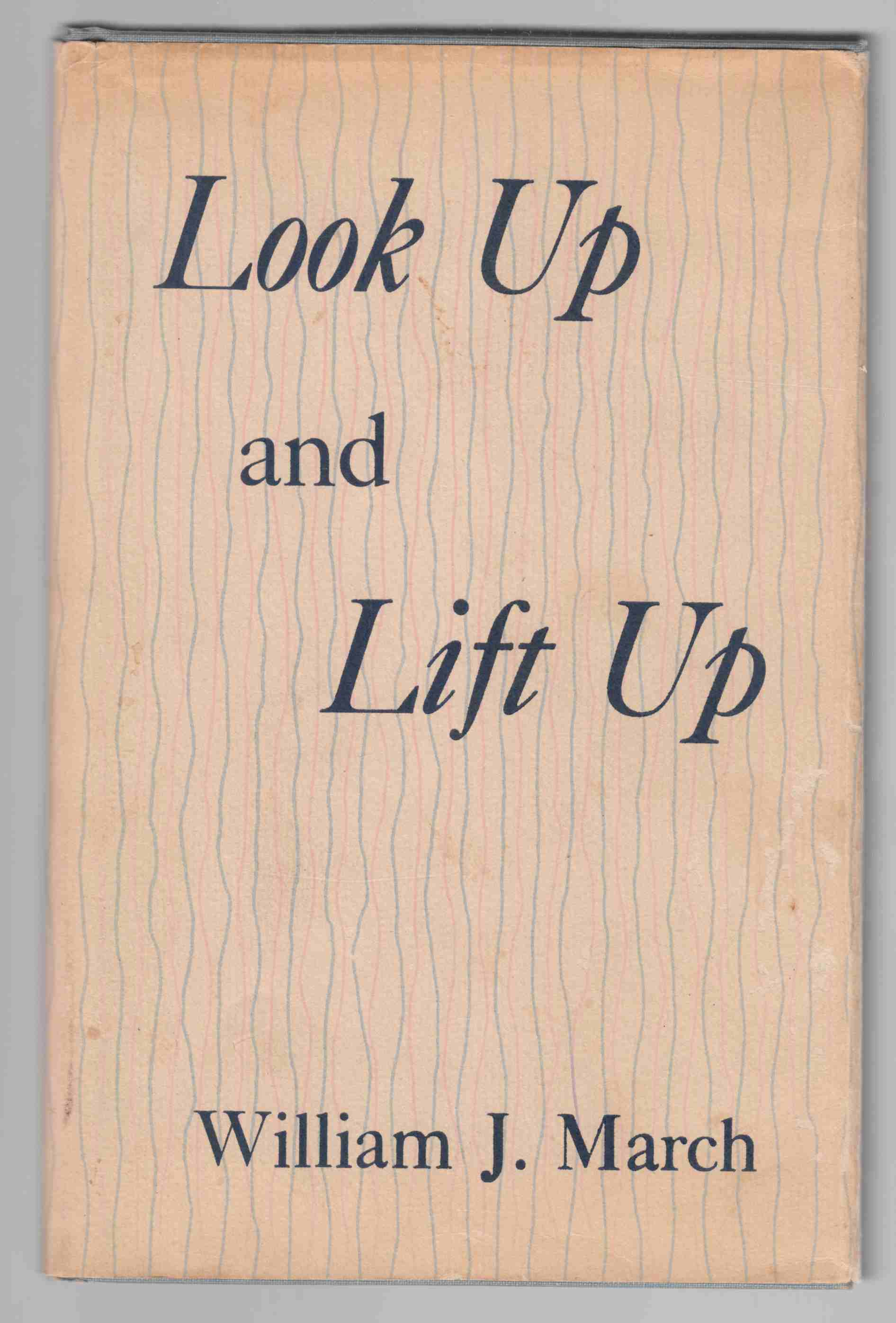 Image for Look Up and Lift Up
