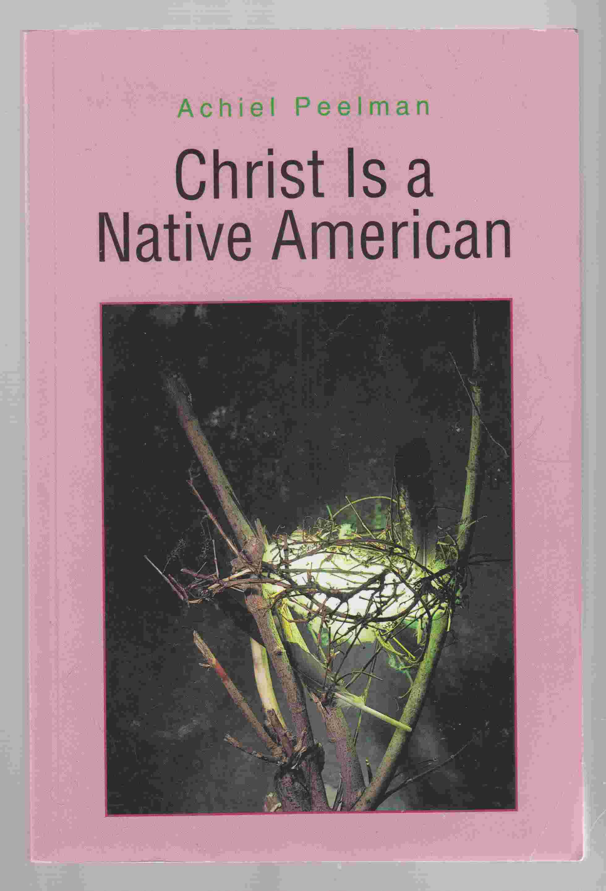 Image for Christ is a Native American