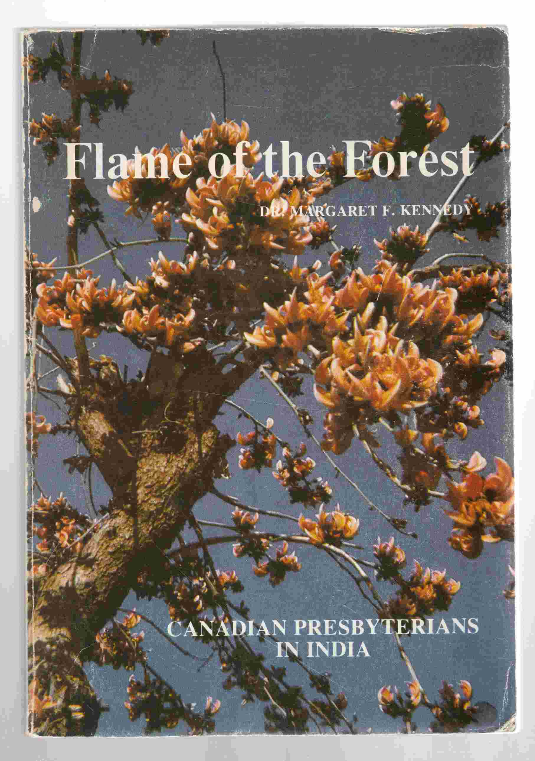 Image for Flame of the Forest, Canadian Presbyterians in India