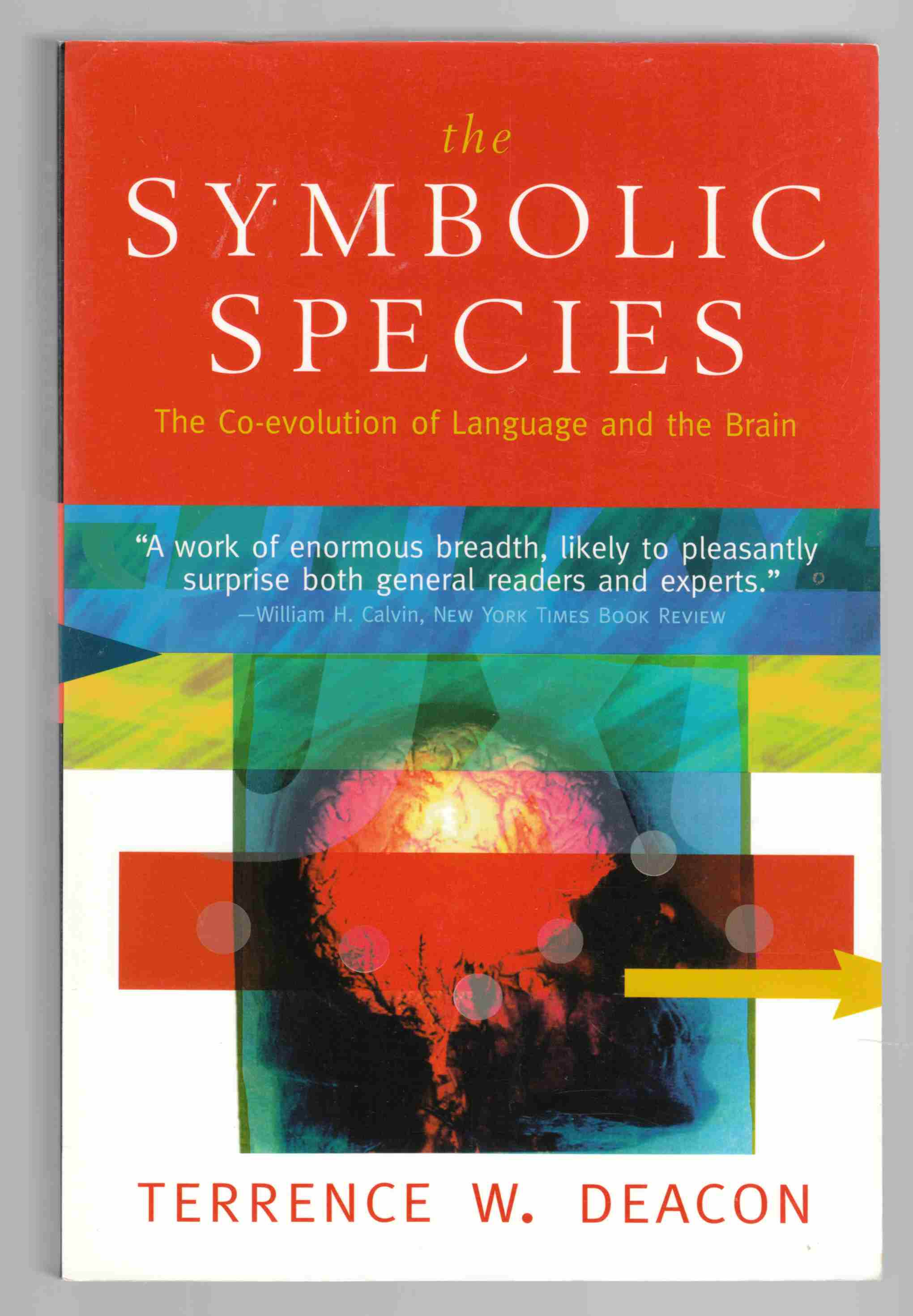 Image for The Symbolic Species The Co-Evolution of Language and the Brain